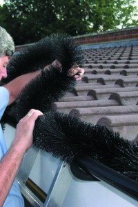 hedgehog-brush-stops-gutter-clutter