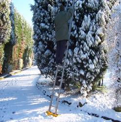 Using A Ladder Staying Safe In The Winter Months