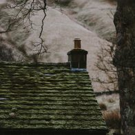 How to remove moss from a roof without damaging the shingles