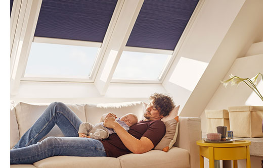 living-rooms-velux