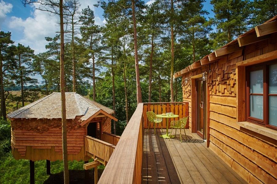 cedar-shingles-treehouse