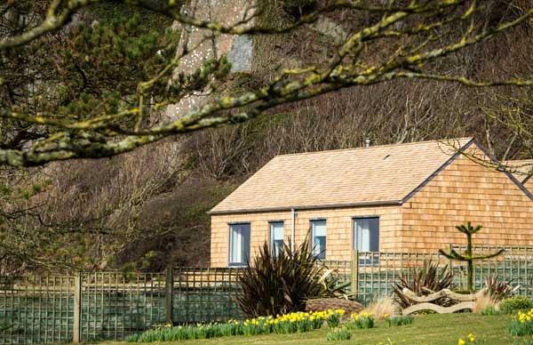 Cedar shingles on a roof