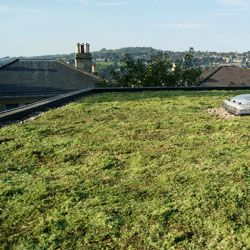 Full Sedum Eco Green Roof - Priced per m2