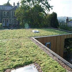 Full Sedum Seeded Eco Green Roof - Priced per m2