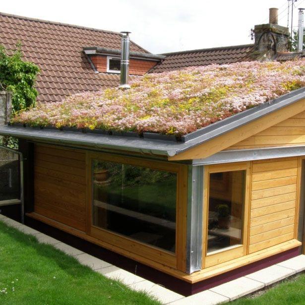Shingle Garden Designs: Green Roofing Sedum Blanket Full System 100m2 Kit