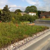 Green Roofing Wild Flower Blanket Full System 100m2 Kit - Skygarden
